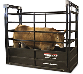 RoughDeck® SLV Animal Livestock Scale