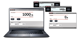 VIRTUi®3 PC-Based HMI for CLS Series Forklift Scale