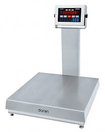 "2200CW SS Checkweigher with 20"" Column"