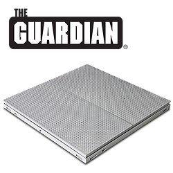 Guardian Hydraulic Scales with Gas-Assisted Lift Decks