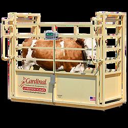 SLS Single Animal Livestock Scales