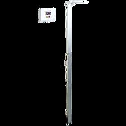 Stadiometer, Adult, Digital