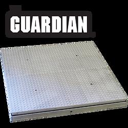 Guardian Hydraulic Floor Scales