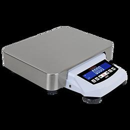 DP Series Digital Precision Balance