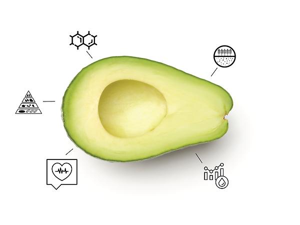 avocado tech.png