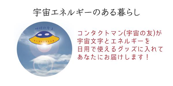 ネットショップ紹介.png