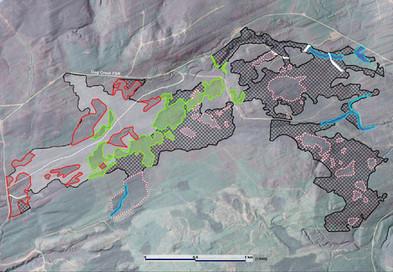 Logging Planning on Burnt Cutblock