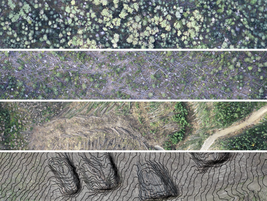 Drones: Applications in Forestry