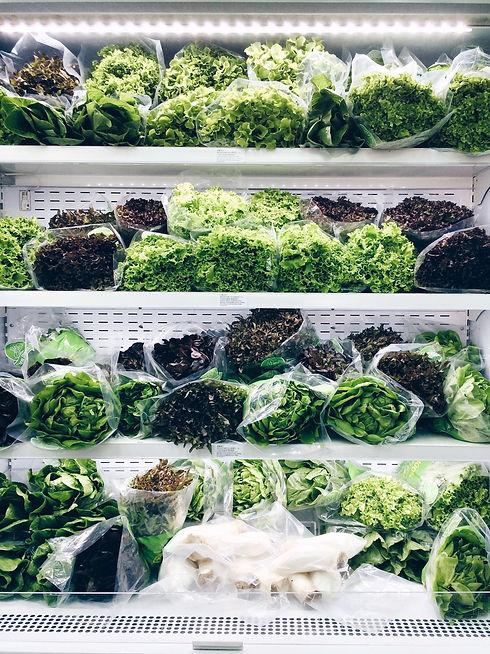 hydroponic-vegetables-on-shelf-VLWSA32.j