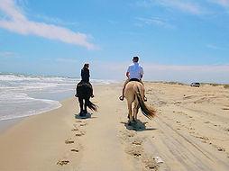 Horseback beachride on Hatteras Island, North Carolina