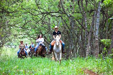 Trailride at Gunstock Ranch in Oahu, Hawaii