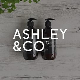 ASHLEY & CO
