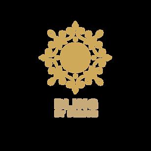 BlingLogo.png