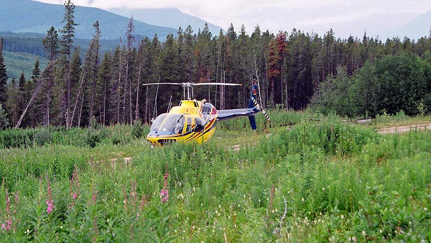 AVIATION-chopper-in-field