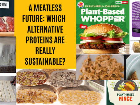 A meatless future: Which alternative proteins are really sustainable?