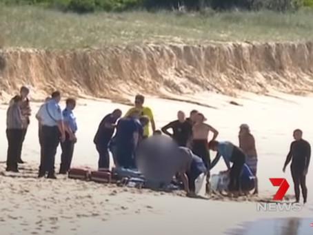 AUSTRALIAN SURFER DIES AFTER SHARK ATTACK