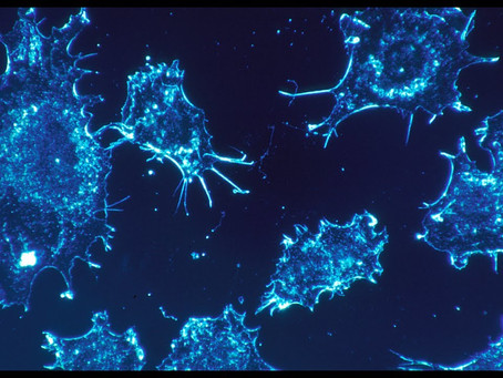 New treatment to destroy cancer cells