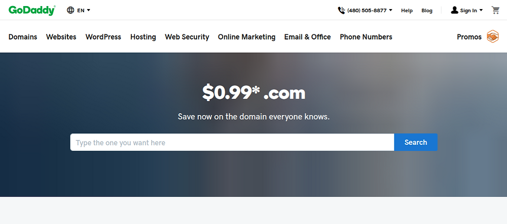 Best Domain Name Service