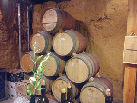 Review: Crossing South: Baja Wine Tours
