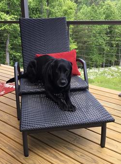 Monterey Adjustable Chaise