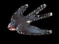 BIRD 1st .ExteriorElement logo-transpare