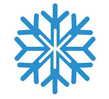 Snowflake Image Full.jpg