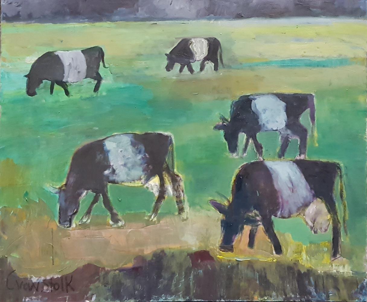 5 Cows