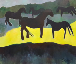 Horses in the wind.