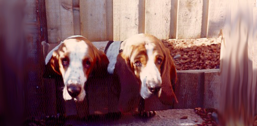 Archie & Juggy