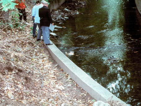 Innocents: The Body in The Creek