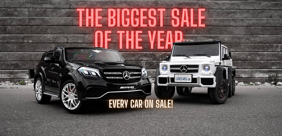 The biggest sale of the year (2).png