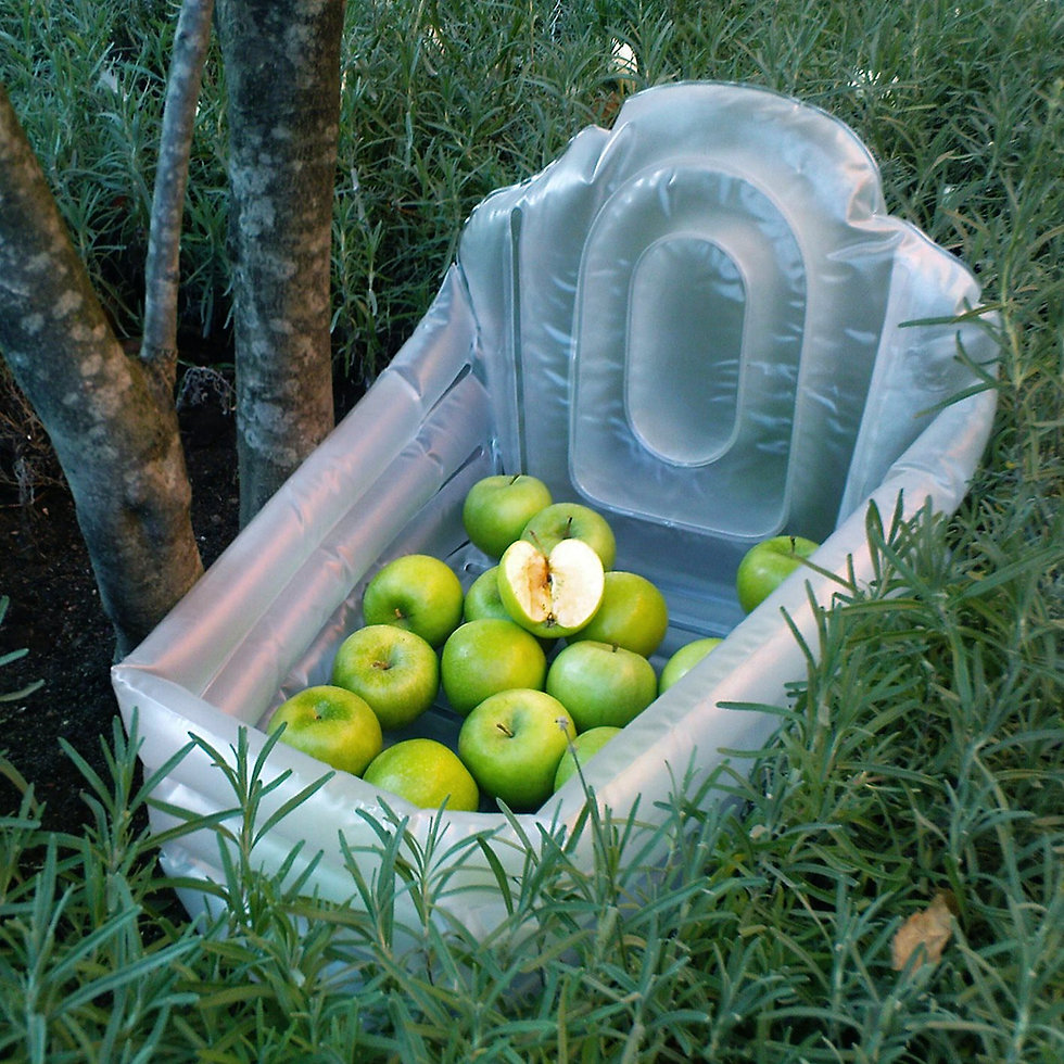Portable inflatable baby bathtub shaped like both a manger and a gravestone, 'Granny Smith' apples. My birthweight in apples. The forbidden fruit. Fruit of knowledge.