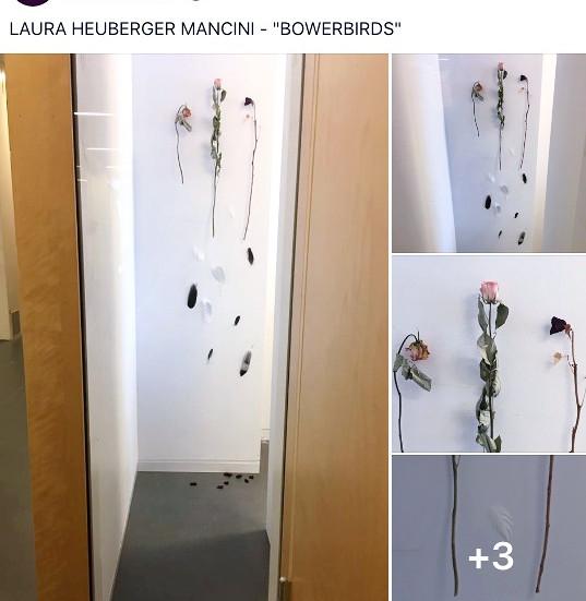 Laura Heuberger Mancini