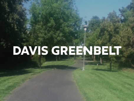 Davis Greenbelt: BUX In Practice