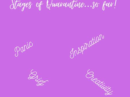 Stages of Quarantine... so far!