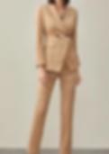 women suit 5.PNG