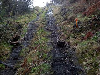 Trail du TKB de PONTIVY