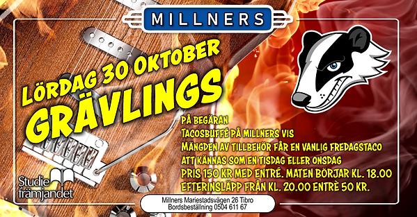lördag 30 oktober grävlings facebook 02.png