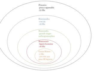 Un regard scientifique sur l'évolution de l'Homme
