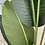 Thumbnail: Artificial Strelitzia Small