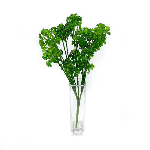 Artificial Parsley Spray Succulent
