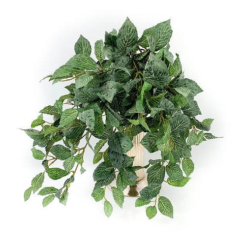 Artificial Fittonia Bushes