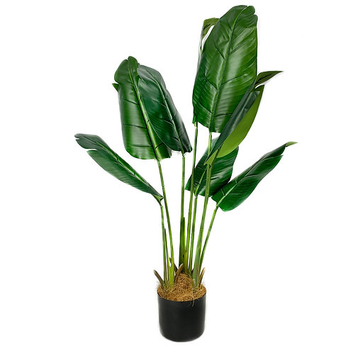 Artificial Strelitzia Small