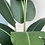 Thumbnail: Artificial Strelitzia Large