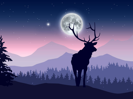 Full Moon in Aquarius ~ Positive Acceleration!