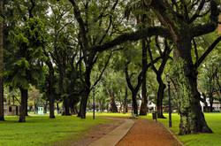 Parque BsAs • Argentina