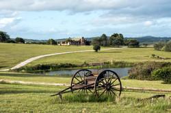 Campo • Uruguay