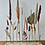 Thumbnail: DIY Boomstam met droogbloemen