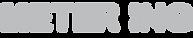 Meter ing logo small.png