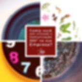 d4a65072-2ce1-40c6-a776-9bedaac611dd.jpg
